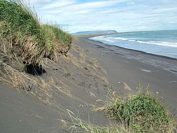 Lífið og tilveran - Hausmynd